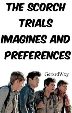 The Scorch Trials Imagines and Preferences by GerxrdWxy