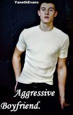 Aggressive Boyfriend ~ S.M. by YanethEvans15