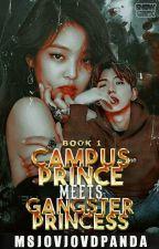 Campus Prince meets Gangster Princess    BOOK 1 by MsjovjovdPanda