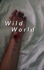 wild world by itsoneam
