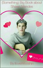 (Something)BIG Book ABOUT SHAWN MENDES😍❤✨ by IloveWooshin
