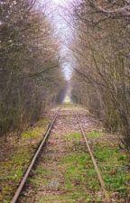 La longue route  by Tischk