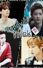 Puppy's Trick by Aeri-Byun-Baek