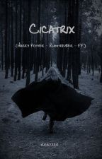 Cicatrix (Harry Potter - Rumtreiber - FF) by rica2220