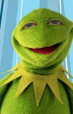 Kermit x Reader BDSM by LethiaWray