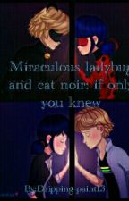 Miraculous ladybug and Cat noir:if only you knew by Dripping-paint13