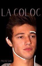 La coloc || CD by AdeleEtPrune