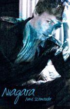 Niagara ▸ Newt Scamander by TheAngelsAreFalling_