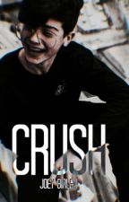 CRUSH || Joey Birlem by StefannyHoran21