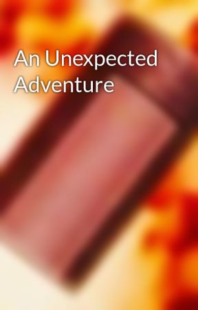 An Unexpected Adventure by Craftman780