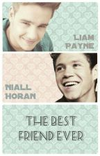 The Best Friend Ever (Niam) by _ScarsAreForever