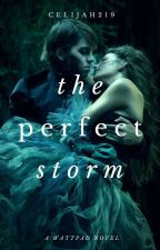 The Perfect Storm | On Hold by Celijah219