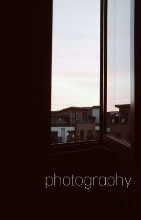 Photography  by thatrandompenguin