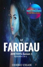 Améthys _  Le Fardeau I (Terminé) by OderuChan1