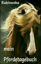 Mein Pferdetagebuch by Rubineska
