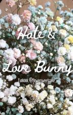 Hate & Love Bunny by rimbioo