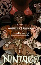 NINJAGO /Numerki z dziennika  by Demon_Podziemia