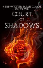 A COURT OF SHADOWS by thefakesjmaas
