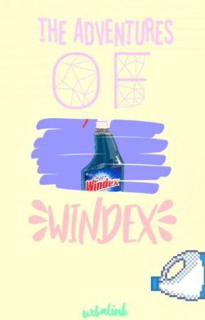 """The Adventures of Windex"" - Rant Book 5 by sinexus"