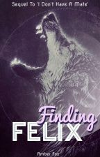 Finding Felix by Foxy_Owl