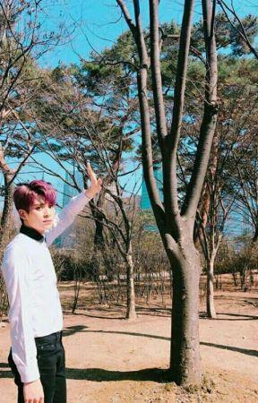 Speechless || Taeyang SF9 by Klysein