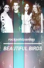 Beautiful Birds by rocksolidpandas