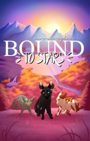 Warriors: Bound To Stars by WarriorzLove