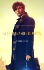 NEWT SCAMANDER IMAGINES by PaigeDayson