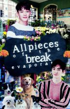 All Pieces of the Break Evaporate[SuChen][TRAD] by NanDaeMil
