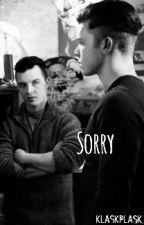 sorry /gallavich by KlaskPlask