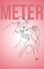 Meter. by Maraandmarta_