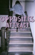 Opposites attract by Damnmarcus