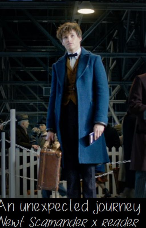 An unexpected journey - Newt Scamander x reader by Amsterdam-girl