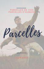 Parcelles by lauhstylesx