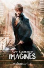 Newt Scamander Imagines by _writersunite_
