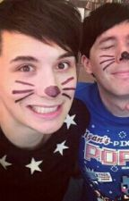 Kitty Whiskers - Phan x Reader by ItsJustKage1