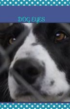 Dog eyes by rainbowpanda24