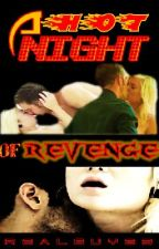 A HOT NIGHT OF REVENGE by realguy23