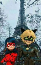 Miraculous Ladybug One Shots and Canons by redefinemyworld_
