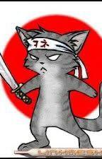 gato ninja by gabriellesantos098