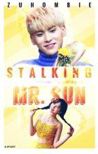 Stalking Mr. Sun by zuhombie