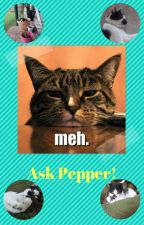 Ask Pepper! by Pepper_the_cat