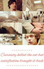 Curiosity killed the cat but satisfaction brought it back || Larry Stylinson by xDreamerOfDreamsx