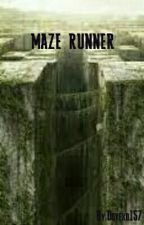 Maze Runner Imagines und Preferences by Dovexo157