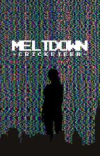 MELTDOWN | a roleplay  by -Cricketeer-
