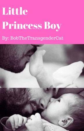 Little Princess Boy by BobTheTransgenderCat