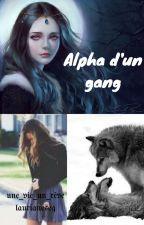 Alpha d'un gang by laurianeseg