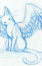 Winged Cat Roleplay(Amazing Title I Know) by Musicdevil