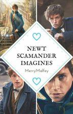 // Newt Scamander Imagines \\ by MerryMalfoy