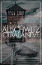 Ad Auschwitz c'era la neve... by plinio1975